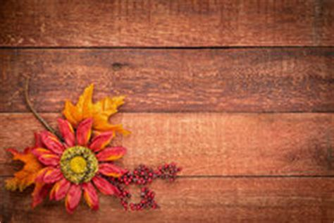 barn wood background  fall decoration stock photo