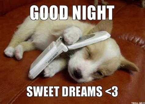 Goodnight Meme Funny - 35 funniest good night memes graphics images picsmine