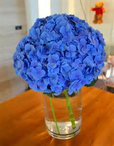 Blue Flower Types and Names