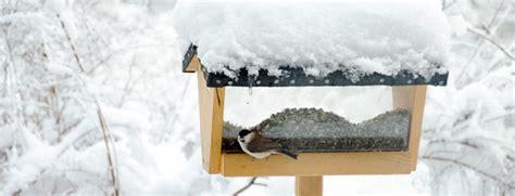 weblog aktion vogelfuttersilo arge naturschutz