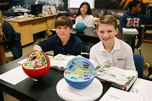 Animal Cell Parts 7th Grade Cell Project Brook Hill School Tyler Tx