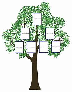 simple family tree template clipart best With plain family tree template
