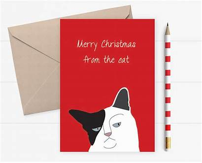Cat Grumpy Christmas Funny Wife Card Husband
