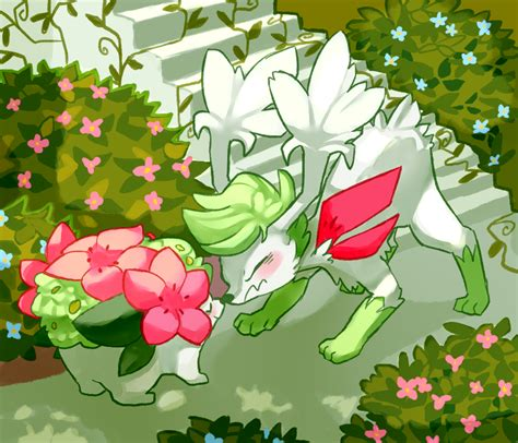 Pokeddexy Day 31all Time Favshaymin By