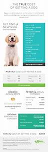 pet sitting website estimates annual new dog ownership With dog sitting cost