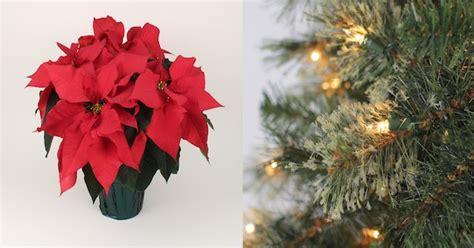 artifical trees black friday lowe s black friday sale 1 quart poinsettias 0 99 reg