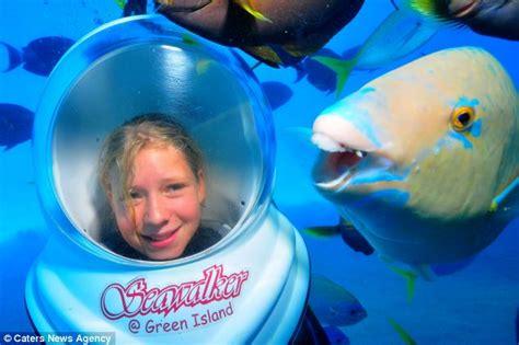 blue parrotfish named gavin  loves photobombing