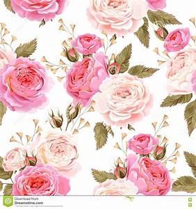 English Roses Seamless Stock Vector - Image: 74250798