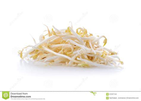 cuisiner pousse de soja pousses de haricot pousses de soja photo stock image du