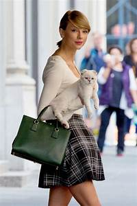 Taylor Swift Leaves for Tour, Bids Sad Farewell to Cat ...