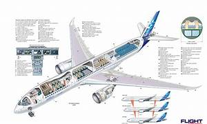 Airbus A350 Xwb Aircraft Airliner History Pictures And Facts