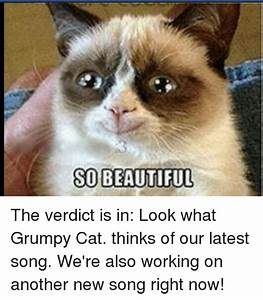 SO BEAUTIFUL the Verdict Is in Look What Grumpy Cat Thinks ...
