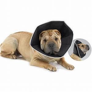Video Pour Chien : couchage accessoires et toilettage brosse cuelle collerette collerette souple pour chien ~ Medecine-chirurgie-esthetiques.com Avis de Voitures