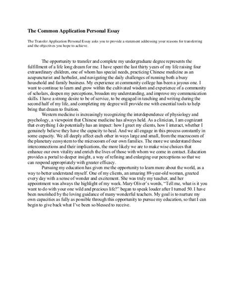 11304 college essay exles common app common application transfer essay 2013