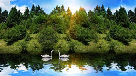 beautiful nature wallpaper pixelstalknet