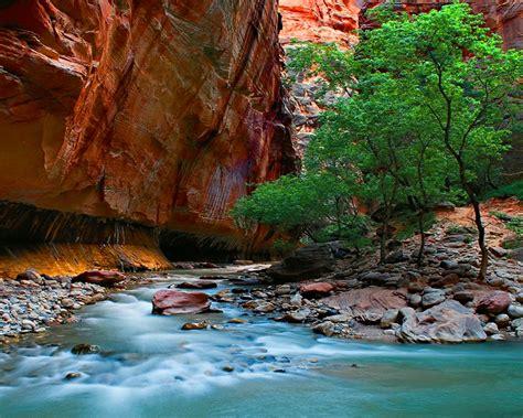 narrows zion national park rocks stones river canyon