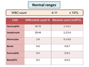 consultant hematologist ppt