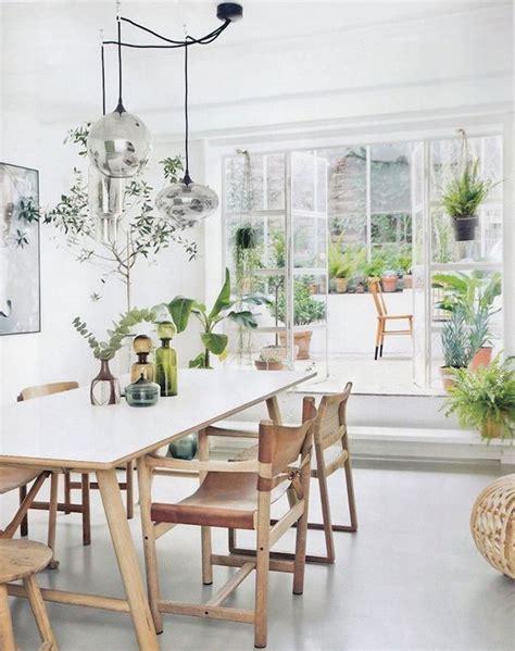 plante cuisine decoration 10 idées pour mettre des plantes dans intérieur