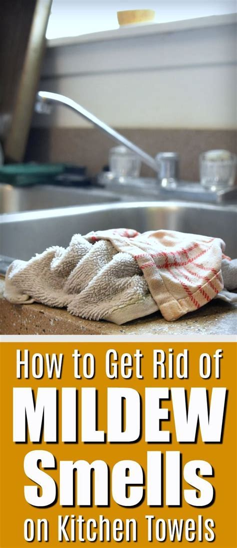 how to get rid of mildew odors on your kitchen dish