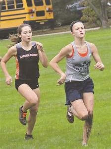 Cross country runners aim for medals at states | News ...