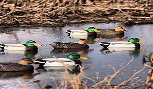 Hunting The Wind  Tips For Waterfowlers And Deer Hunters