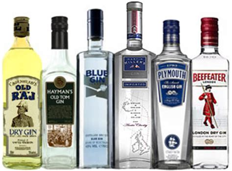 brands of gin gins what richard is drinking