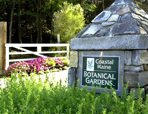 maine botanical gardens new growth at coastal maine botanical gardens the
