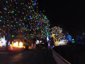 denver zoo lights tickets at king soopers best zoo 2017