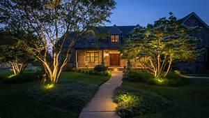 Professional Landscape Lighting