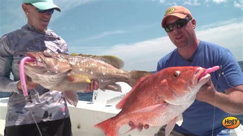 grouper deep drop lures hogy snapper