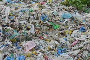 Tonne A Eau Plastique : le forum de produits phytosanitaire les ~ Dailycaller-alerts.com Idées de Décoration