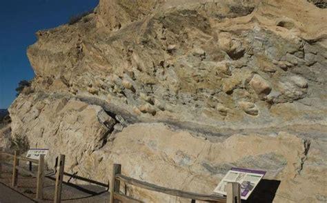 geology dinosaur fossil finds coloradoinfocom