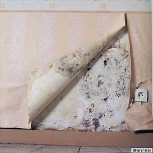 Anti Humidité Mur : r soudre les probl mes de salp tre et d 39 humidit avec un ~ Edinachiropracticcenter.com Idées de Décoration