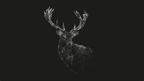 Polygon Animal Wallpaper - polygon deer hd wallpaper and background image