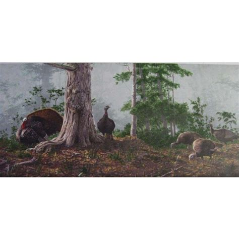 hunting  turkey wallpaper border hgb   walls