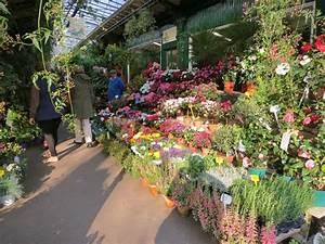 Les Fleurs Paris : what to see and do in paris the flower market ~ Voncanada.com Idées de Décoration