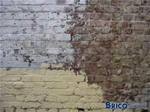 nettoyage vieux murs exterieurs en briques With decaper un mur exterieur peint