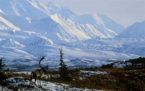 desktop backgrounds mountains  images
