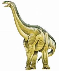 Long Neck Dinosaur Drawing At Getdrawingscom Free For