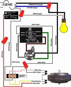 Hunter fan light connector wiring diagram