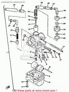 Yamaha Lb50pg Chappy 1980 Ph  Pj