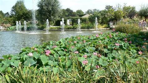 jet d eau photo de terra botanica angers tripadvisor