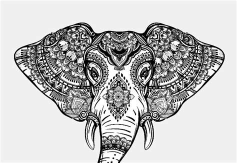 immagini da colorare mandala animali animali mandala lucrezia giarratana
