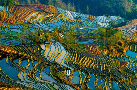 yuanyang rice terraces zonitrip 5 strange and beautiful rice terraces zonitrip