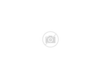 Circuit Lines Points Electronics
