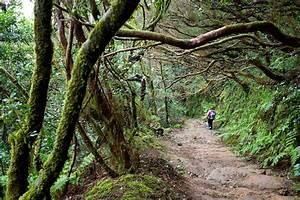 Una Familia Se Perdi U00f3 Parque Rural Anaga  Tenerife