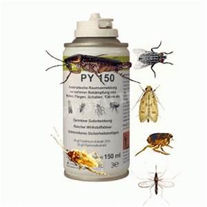 Kakerlaken ähnliche Insekten : bek mpfung sch dlinge kakerlaken schaben insekten ~ Articles-book.com Haus und Dekorationen