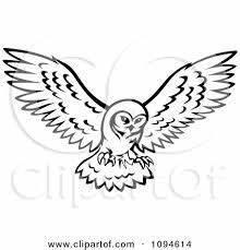flying owl doodles | 100 owl illustrations | Pinterest ...