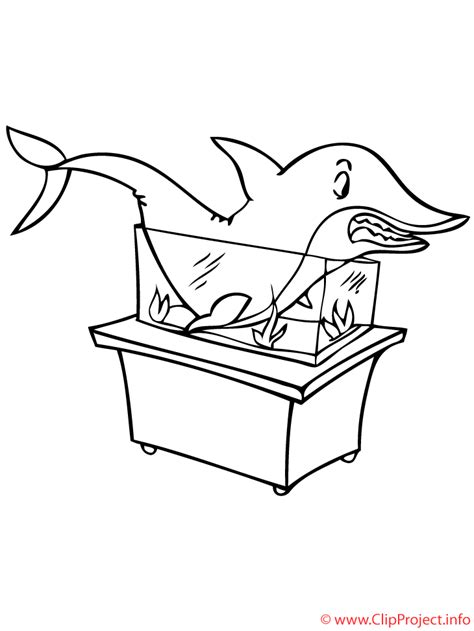 hai ausmalbild zoo ausmalbilder