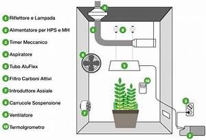 Allestire il GrowBox Completo Botanica Urbana Grow Shop Coltivazione Indoor e Idroponica